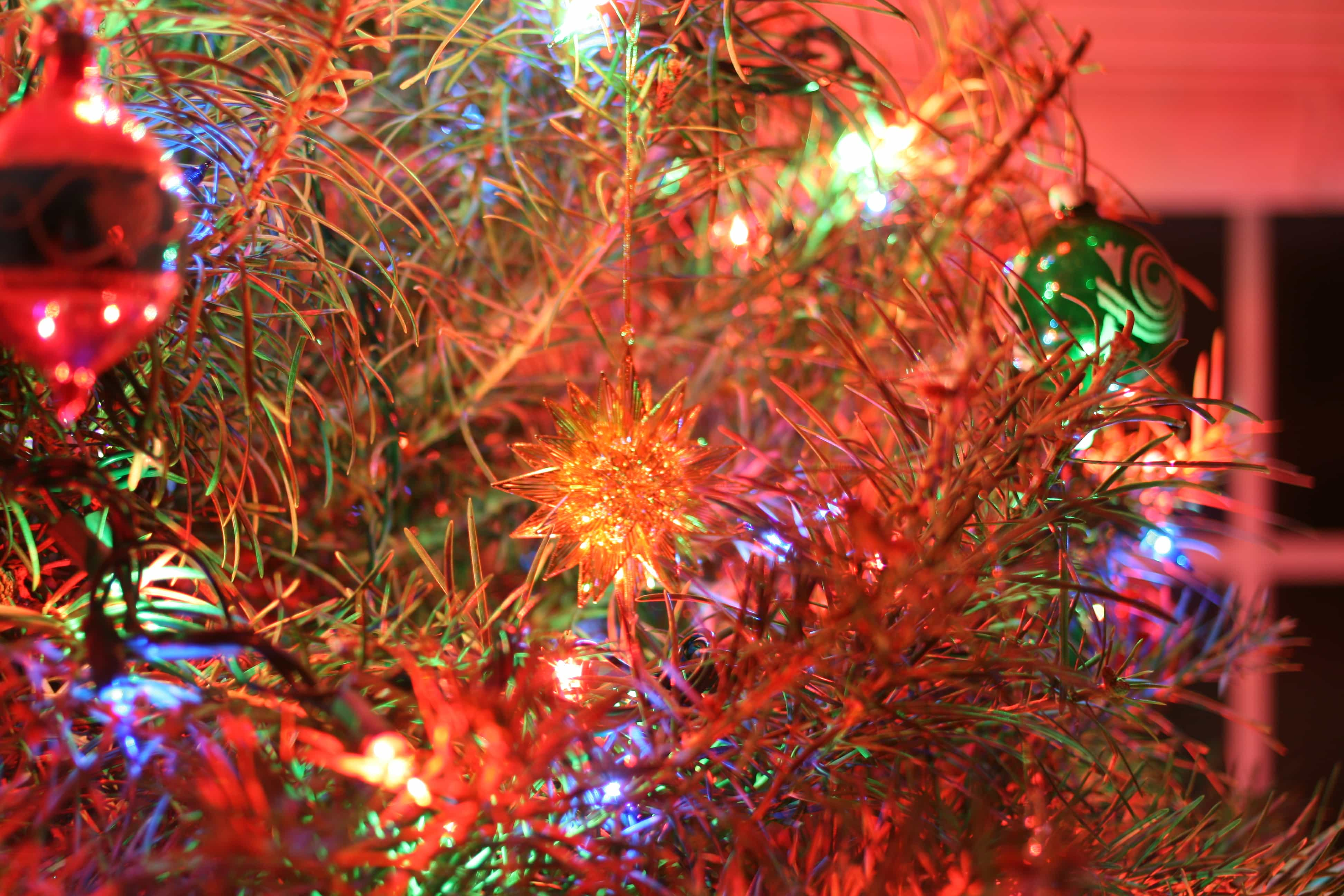 christmas tree by stephen butler cc by nc 20 - Christmas Songs Classic