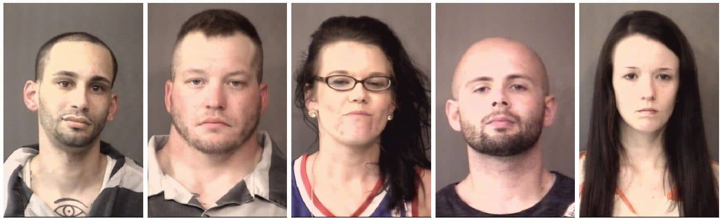 Five arrested following search of home near Hoffman Lake